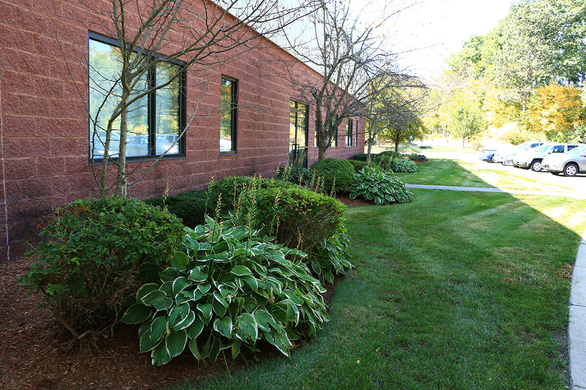 commercial lawn care maintenance services sterling mass